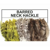 BARRED NECK HACKLE 1/4oz pack