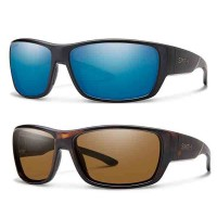 FORGE POLY POLARIZED