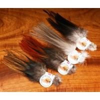 Gallo de Leon Saddle Feathers